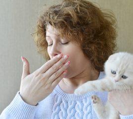 ペットとアレルギーについて